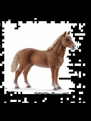 Schleich 13869 Morgan Horse stallion