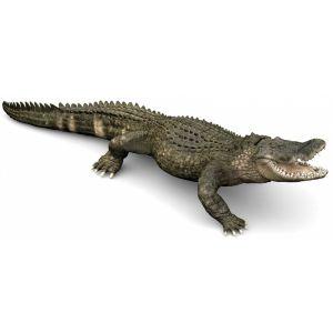 Papo Wild Life Alligator 50254
