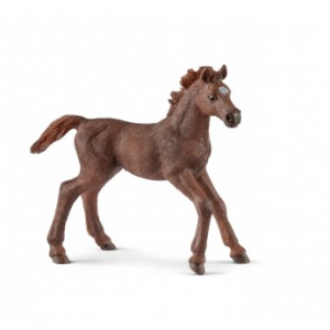 Schleich 13857 English thoroughbred foal