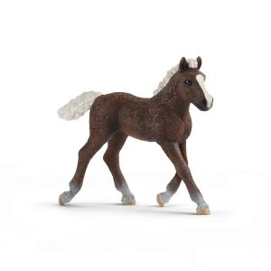 Schleich Horse 13899 Black Forest foal